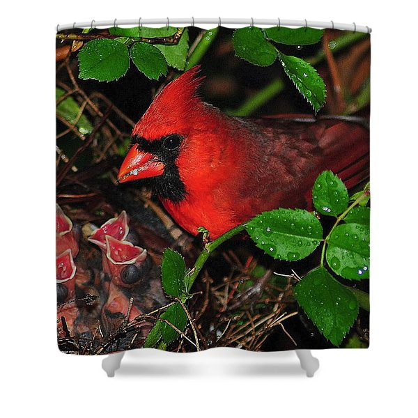Midnight Snack ll Shower Curtain by Frozen in Time Fine Art Photography