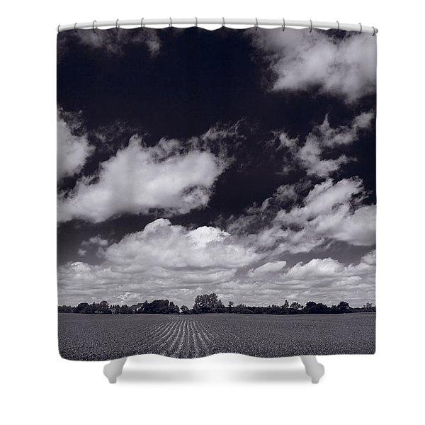Midwest Corn Field BW Shower Curtain by Steve Gadomski