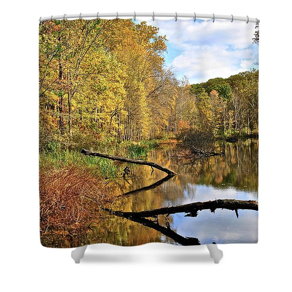 Mirror Mirror On The Floor Shower Curtain by Frozen in Time Fine Art Photography