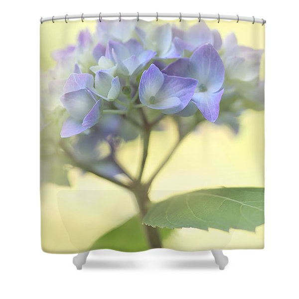 Misty Hydrangea Flower Shower Curtain by Jennie Marie Schell