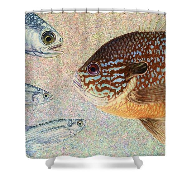 Mooneyes Sunfish Shower Curtain by James W Johnson