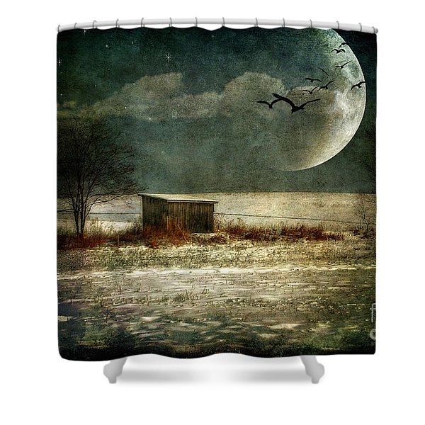 Moonstruck Shower Curtain by Lois Bryan