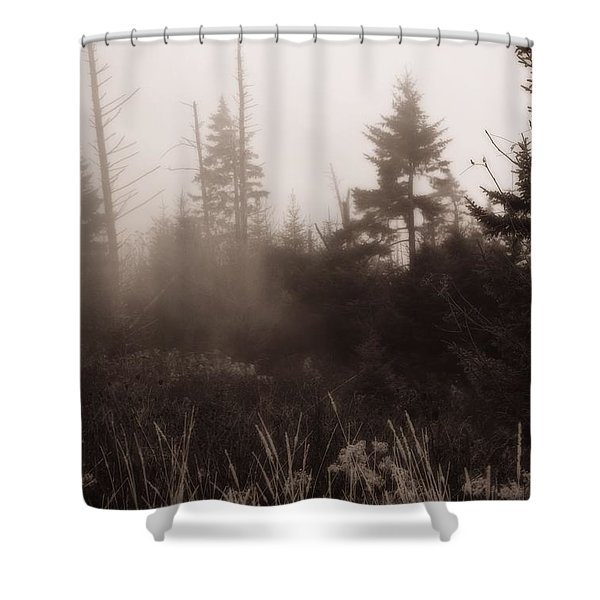 Morning Fog In The Smoky Mountains Shower Curtain by Dan Sproul