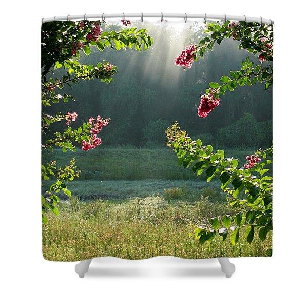 Morning Marsh Shower Curtain by Carol Groenen