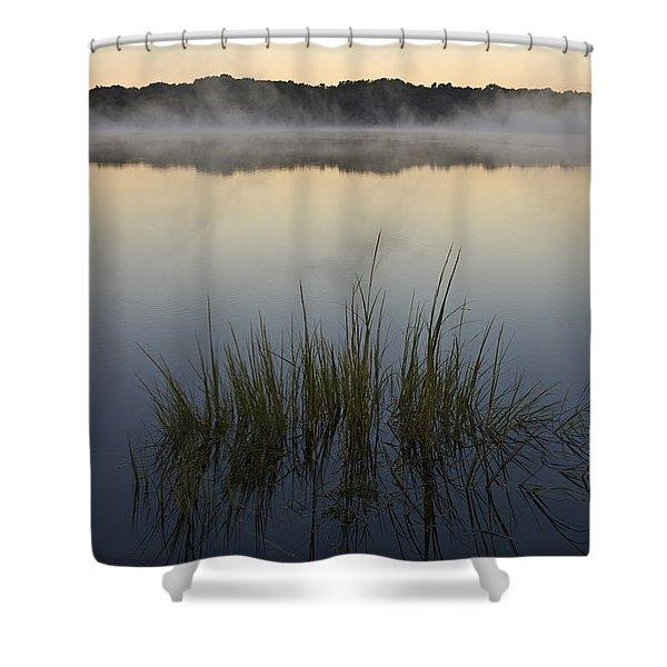 Morning Mist at Sunrise Shower Curtain by David Gordon