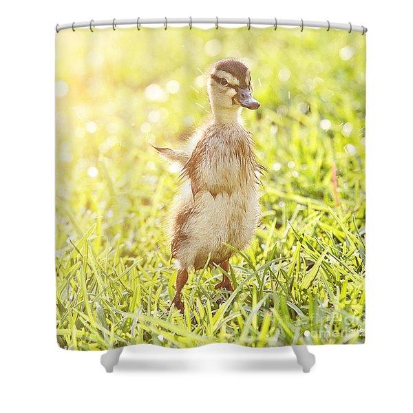 Morning Stretch Shower Curtain by Scott Pellegrin
