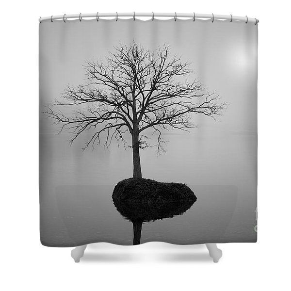 Morning Tranquility Shower Curtain by Dave Gordon