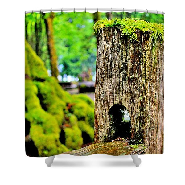 Mosspost Shower Curtain by Benjamin Yeager