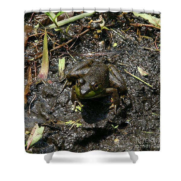 Mud Bath Shower Curtain by Neal  Eslinger