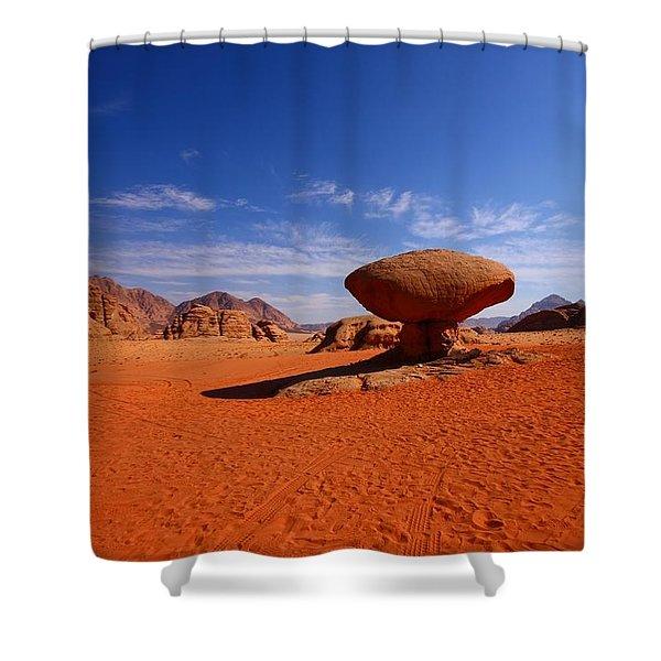 Mushroom Rock Shower Curtain by FireFlux Studios