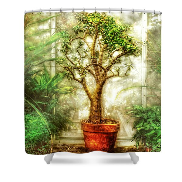 Nature - Plant - Tree of life  Shower Curtain by Mike Savad