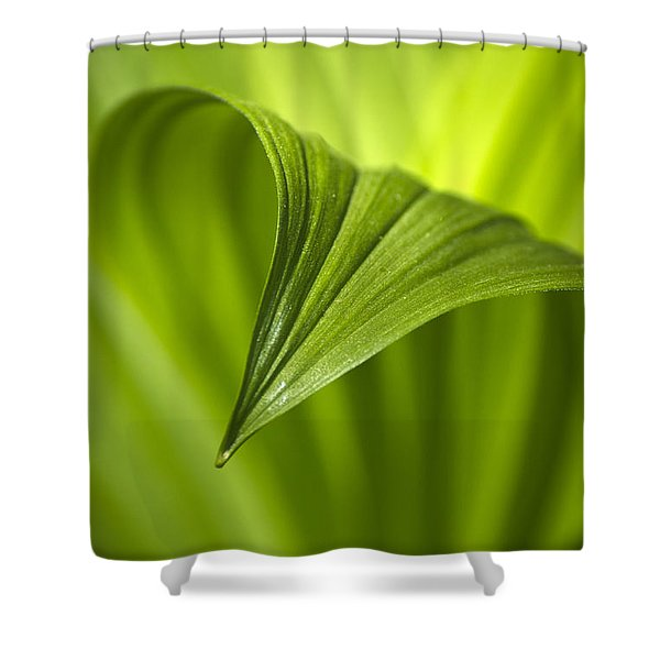 Nature Unfurls Shower Curtain by Christina Rollo