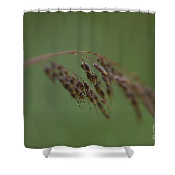 Nature Whisper.. Shower Curtain by Nina Stavlund
