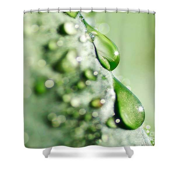 Nature's Teardrops Shower Curtain by Kaye Menner