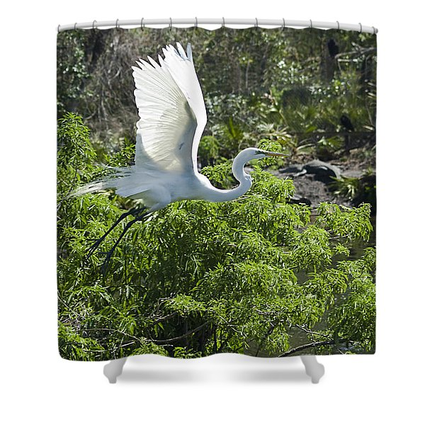 Need More Branches Shower Curtain by Carolyn Marshall