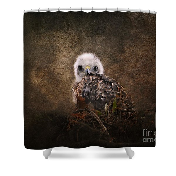 Nestling Shower Curtain by Jai Johnson