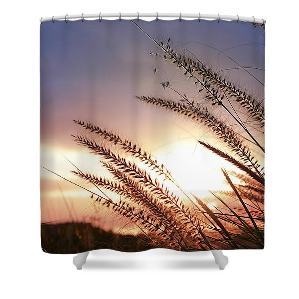 new day Shower Curtain by Laura  Fasulo