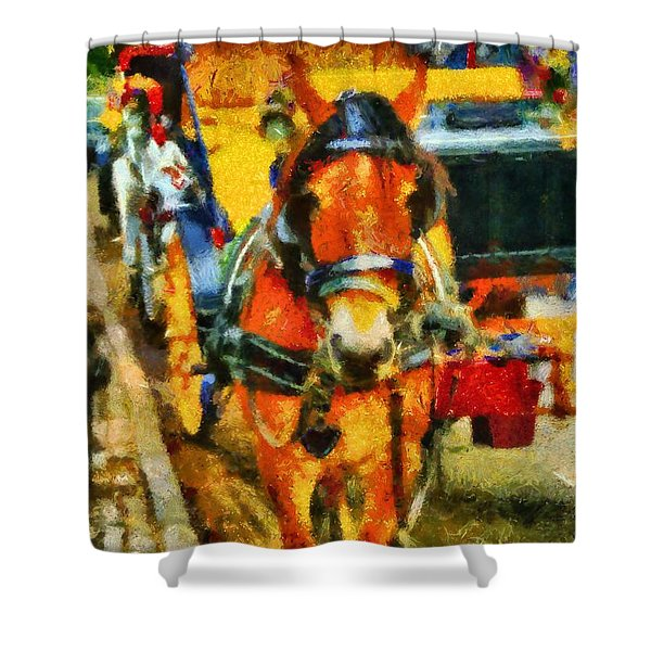 New York Horse And Carriage Shower Curtain by Dan Sproul