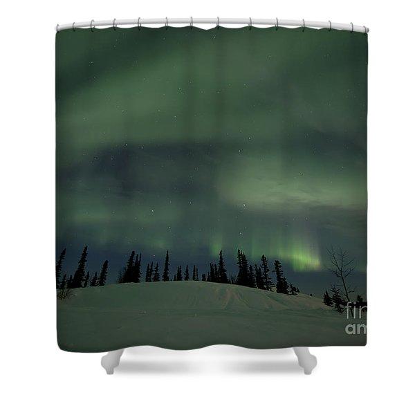 night lights Shower Curtain by Priska Wettstein