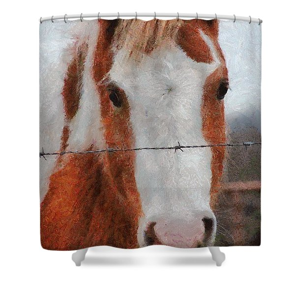 No Fences Shower Curtain by Jeff Kolker