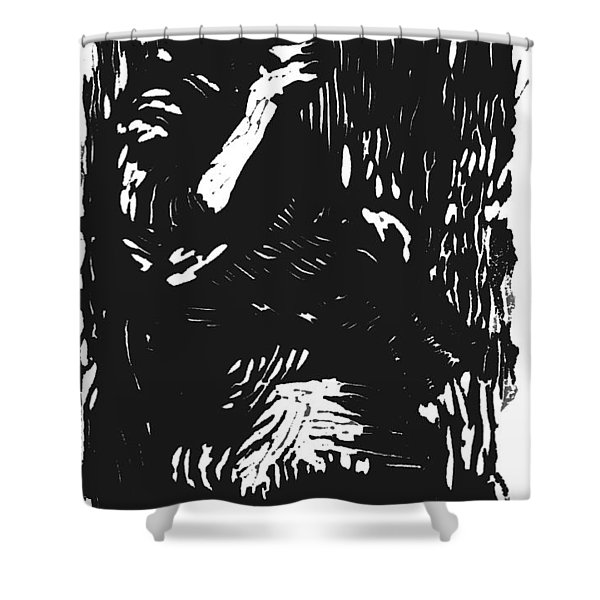 Noonday Thirst Shower Curtain by Seth Weaver