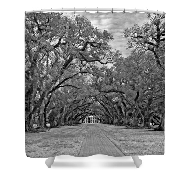 Oak Alley 3 monochrome Shower Curtain by Steve Harrington