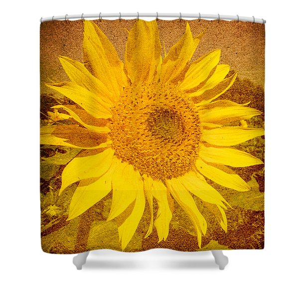 Of Sunflowers Past Shower Curtain by Bob Orsillo