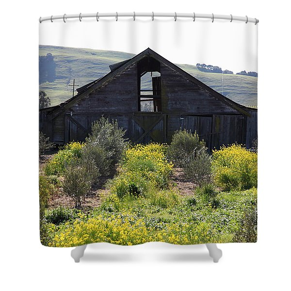 Old Barn in Sonoma California 5D22236 Shower Curtain by Wingsdomain Art and Photography