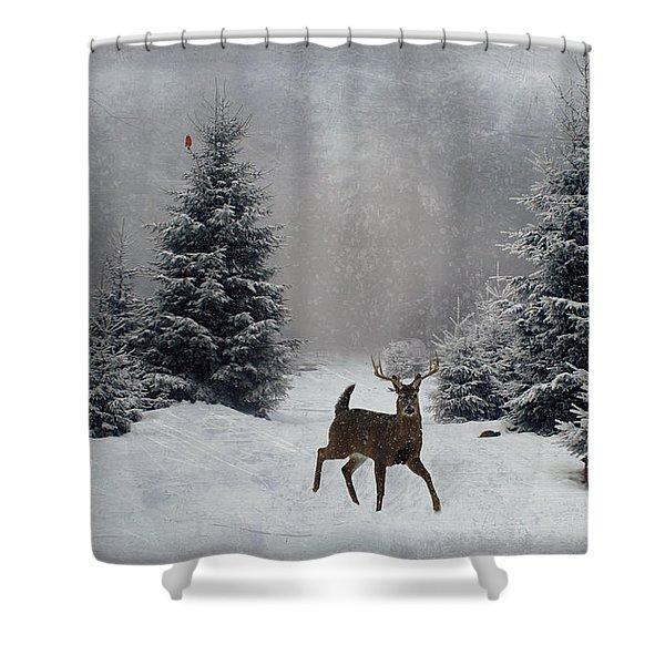 On a snowy evening Shower Curtain by Lianne Schneider