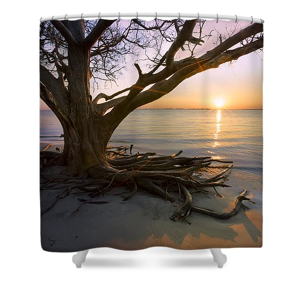 On The Edge Of The Surf Shower Curtain by Debra and Dave Vanderlaan