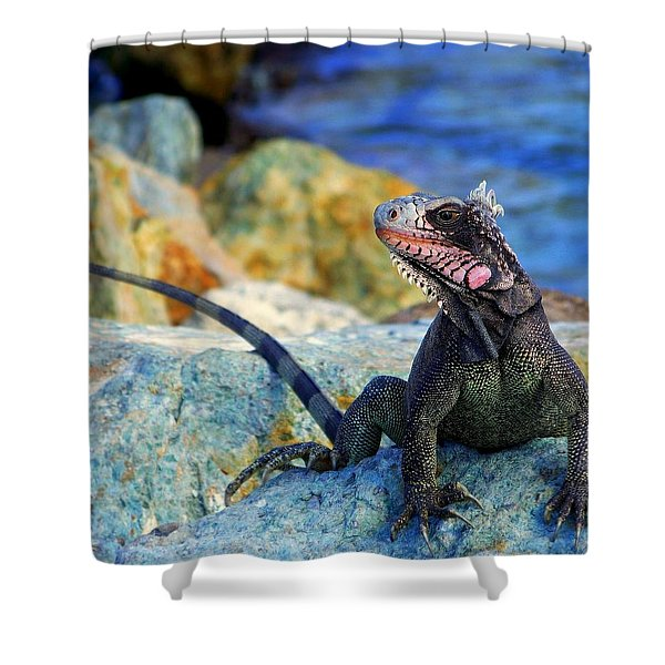 ON the PROWL Shower Curtain by KAREN WILES