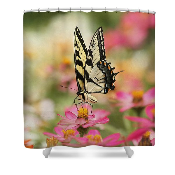 On The Top - Swallowtail Butterfly Shower Curtain by Kim Hojnacki