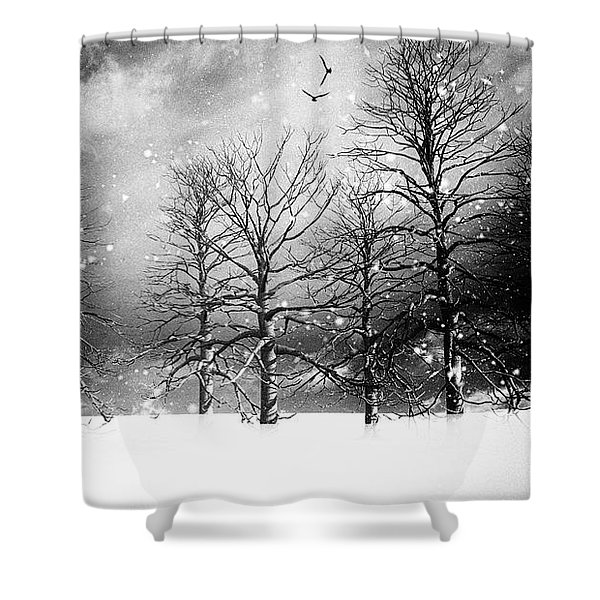One Night In November Shower Curtain by Bob Orsillo