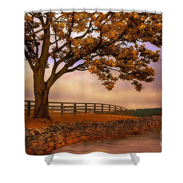 One Tree Hill Shower Curtain by Lois Bryan