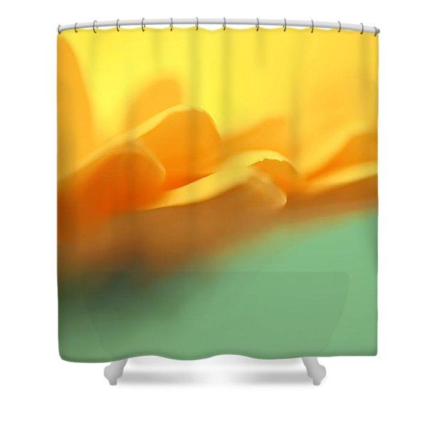 Orange Flower Petals Abstract Shower Curtain by Jennie Marie Schell