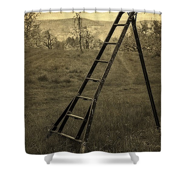 Orchard Ladder Shower Curtain by Edward Fielding