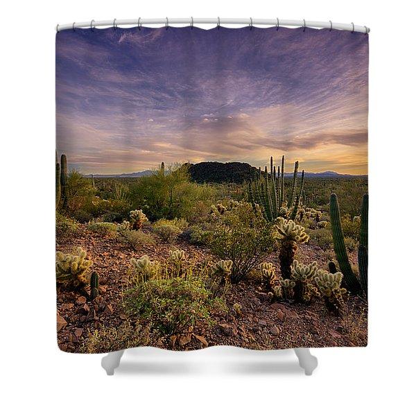 Organ Pipe Cactus Sunset Shower Curtain by Saija  Lehtonen