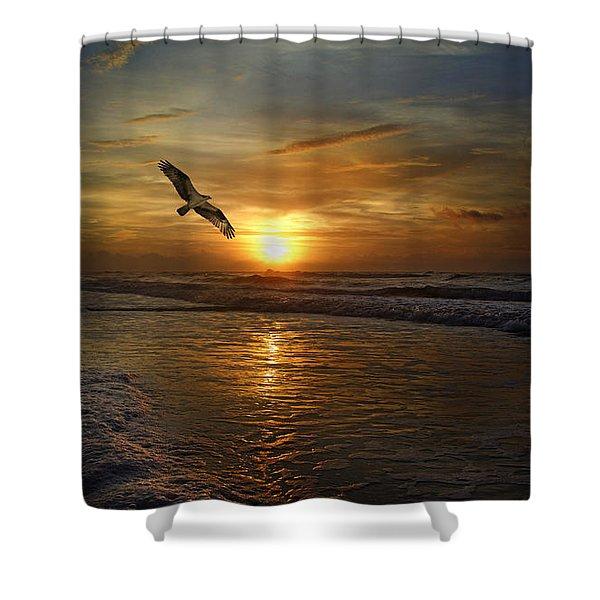 Osprey Sunrise Shower Curtain by Betsy C  Knapp