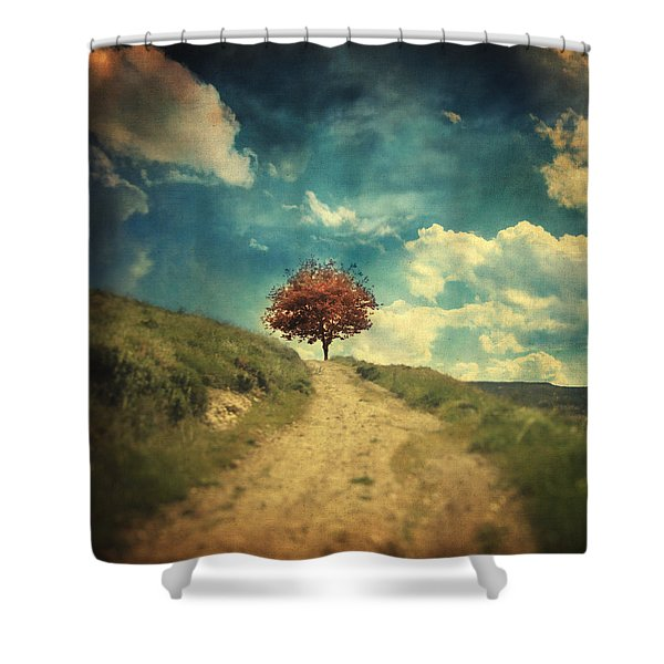 Other Stories Shower Curtain by Taylan Soyturk
