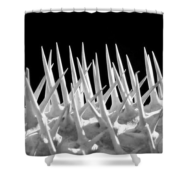 Ouch Shower Curtain by Sabrina L Ryan