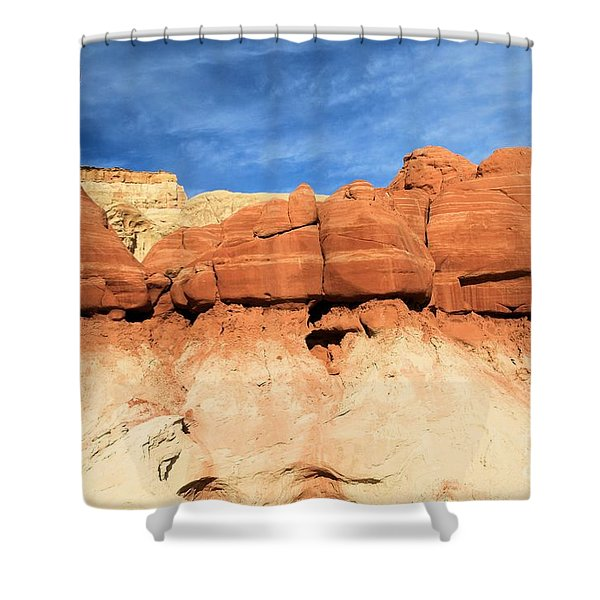 Out Of Place Shower Curtain by Adam Jewell