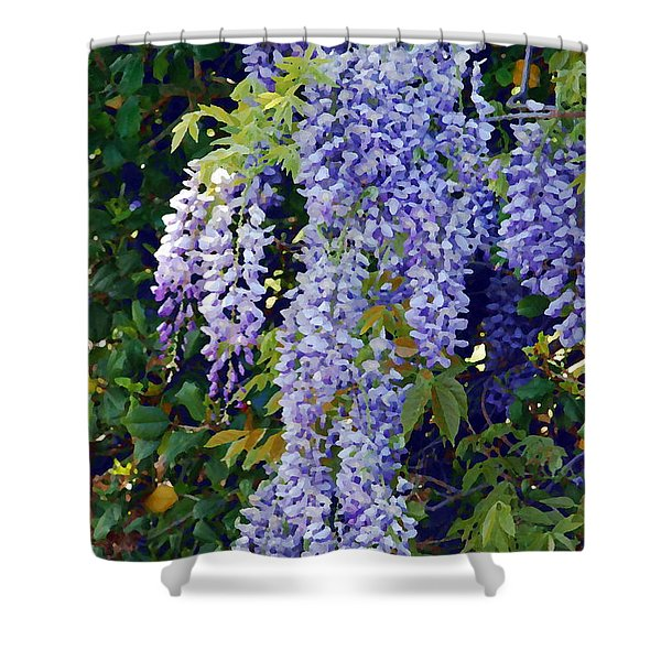 Painted Wisteria  Shower Curtain by Francie Davis