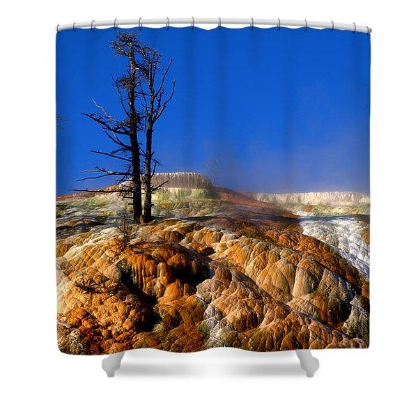 Palette Spring Steam Shower Curtain by Brian Harig