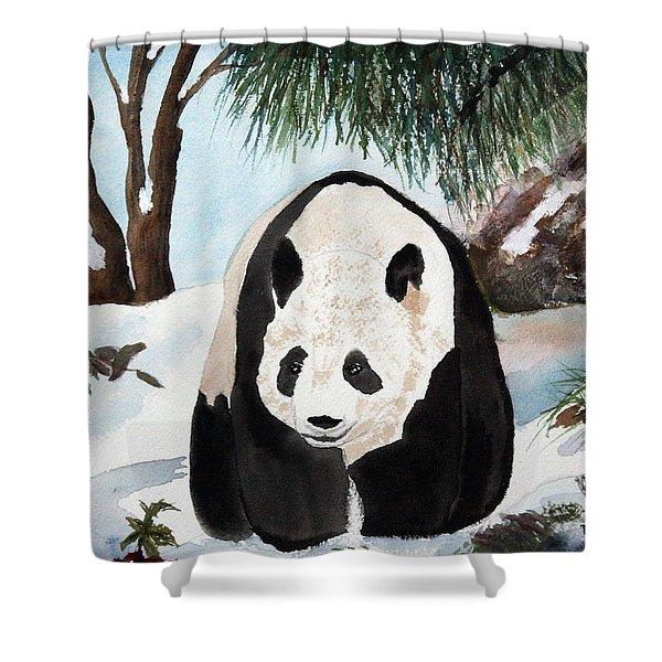 Panda On Ice Shower Curtain by Patricia Novack