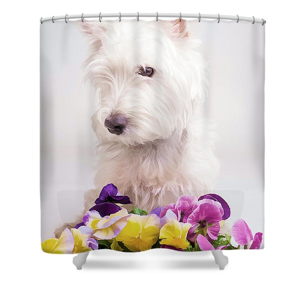 Pansies Shower Curtain by Edward Fielding