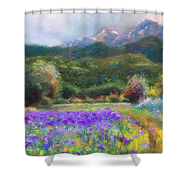 Path to Nowhere Shower Curtain by Talya Johnson