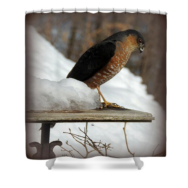 Patience Shower Curtain by Mim White