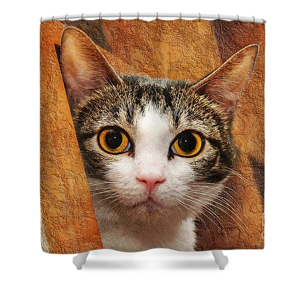 Peek A Boo I See You Shower Curtain by Andee Design