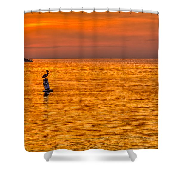 Pelican On A Buoy Shower Curtain by Marvin Spates