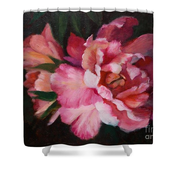Peonies No 8 The Painting Shower Curtain by Marlene Book